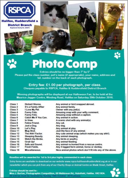 rspca-photo-comp