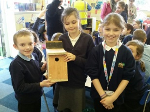 Finished bird box