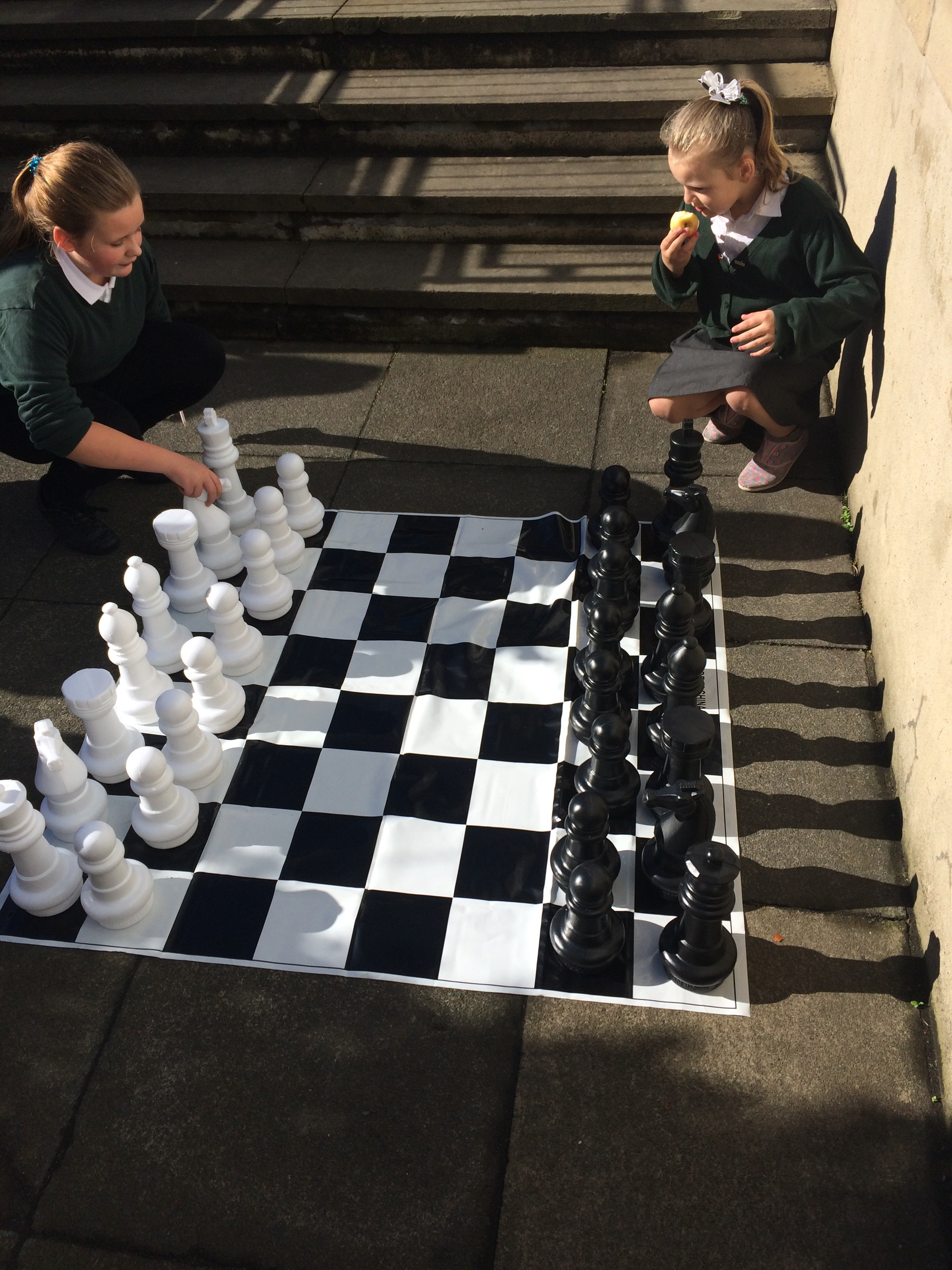 Outdoor Chess for Ash Green from Ward Forum Grant   Halifax