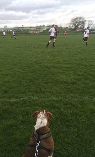 Football(9)